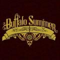 BuffaloSummerCover